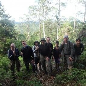 Borneo Jungle Hike