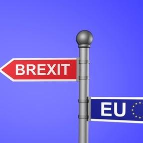 Brexit Predictions